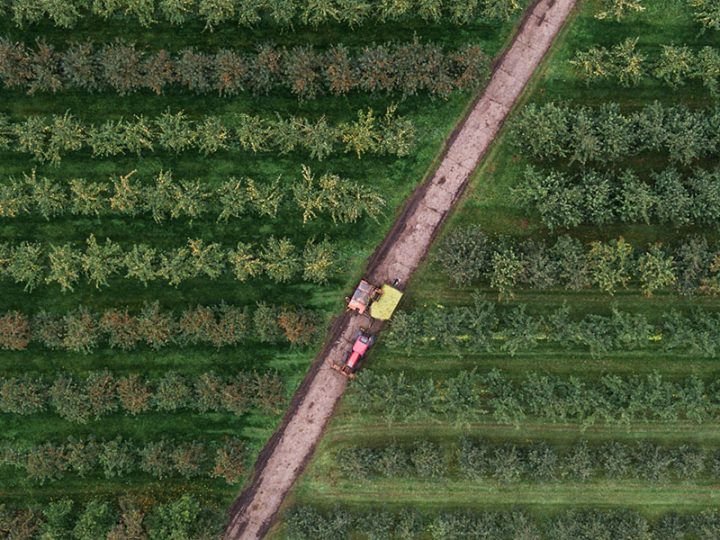 Stakeholders increasingly reward sustainable supply chains – and expect regenerative approaches